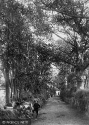 Barton Road 1906, Dawlish