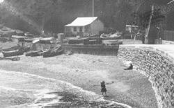 Boat Cove 1903, Dawlish