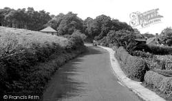 Delamere, Delamere Forest c.1955