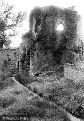 Denbigh, Castle, North Eastern Tower 1891