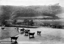Derwenlas, Dovey River 1901
