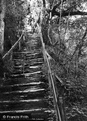 Jacob's Ladder c.1955, Devil's Bridge