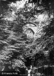 The Falls c.1960, Devil's Bridge