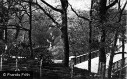 Devils Bridge, c.1931