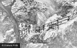 Devils Bridge, The Falls c.1960
