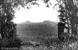 Didcot, Wittenham Clumps c.1955