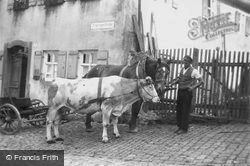 Ox And Horse And Carts c.1939, Dinkelsbuhl