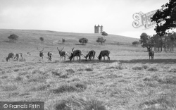 Disley, Lyme Cage And Deer c.1935