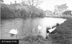 Ditchling, The Pond c.1960