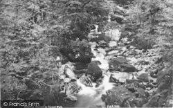 Dolgellau, Cascade In Torrent Walk c.1890