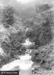 Dolgellau, The Falls, Torrent Walk 1895