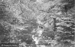 Dolgellau, Torrent Walk 1894