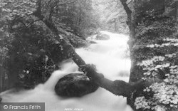Dolgellau, Torrent Walk 1895