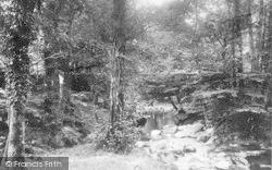 Dolgellau, Torrent Walk Bridge 1894