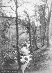 Dolgellau, Torrent Walk c.1880