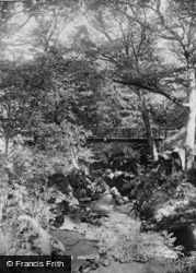 Dolgellau, Torrent Walk c.1890