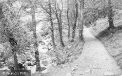 Dolgellau, View In Torrent Walk c.1880