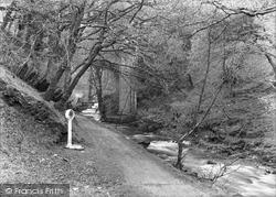 Dolgoch, Entrance To Falls 1932