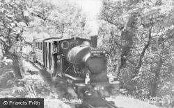 Dolgoch, Tal-Y-Llyn Railway c.1955