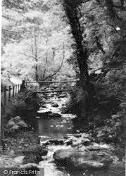 Dolgoch, The River c.1950