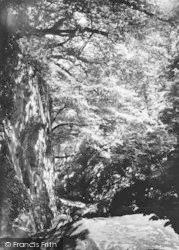 Dolwyddelan, Fairy Glen c.1950