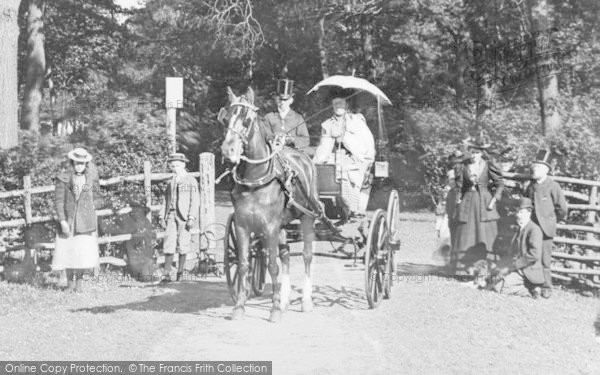 Photo of Doncaster, Visitors, Sandall Beat Wood 1900