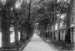 Dorchester, The Avenue 1895