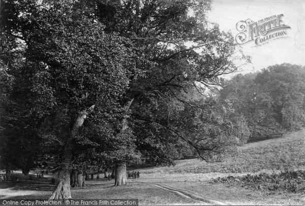 Dorking Betchworth Park 1903 Francis Frith