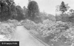 Dorking, Bury Hill, Gardens 1931