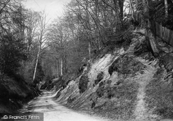 Dorking, The Hollows 1891