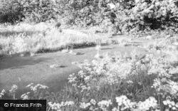 Castle Site 1959, Duffield