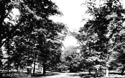 Dunham Massey, View In Dunham Park 1886