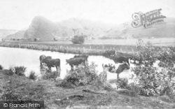 Dysynni Valley, Bird Rock 1901