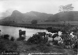 Dysynni Valley, Craig Yr Aderyn (Bird Rock) 1901