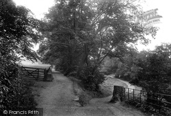 Easby, Woodland Walk 1913