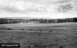 Easebourne, Cowdray Park c.1955