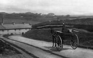 East Blatchington, a Horse and Trap 1891