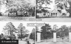 East Budleigh, Bicton Gardens Composite c.1955