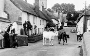 East Budleigh, the Village c1955