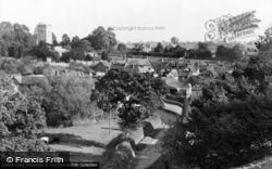 East Budleigh, The Village From Hayes Lane c.1955