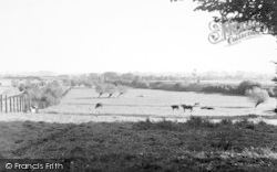 East Lyng, View From The Village c.1955