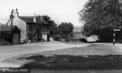 East Witton, Holly Tree c.1960