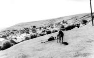 Ebbw Vale, On The Mountain c.1960