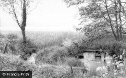 Eccleshall, Copmere Pool c.1965