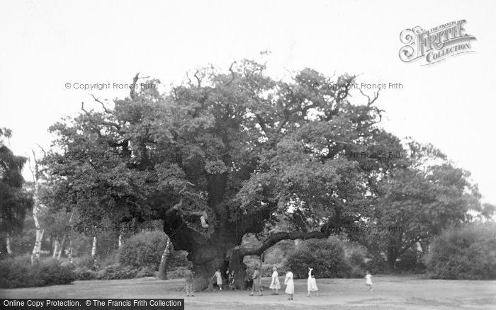 Photo of Edwinstowe, Major Oak, Sherwood Forest c.1960