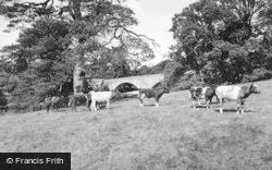 Eggleston, Tees Bridge c.1960