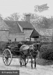 A Horse Carriage 1906, Ellington