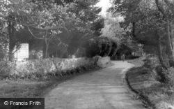 Ancton Lane c.1965, Elmer