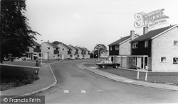 White House Grove c.1965, Elvington