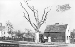 Enfield, Queen Elizabeth's Tree, Chase Green 1868